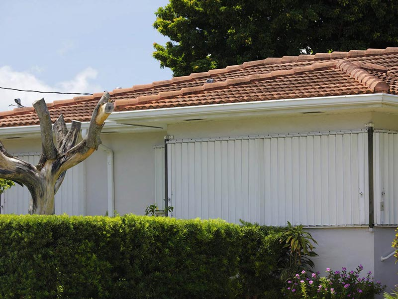 Roof and tree that have been damaged by a hurricane