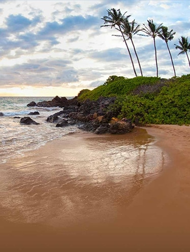 Maui beach at sunset