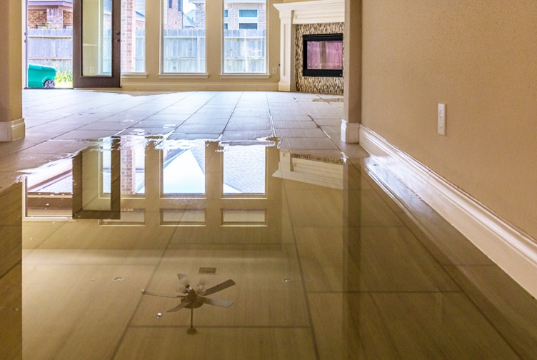 Water creates damage on a hardwood floor.